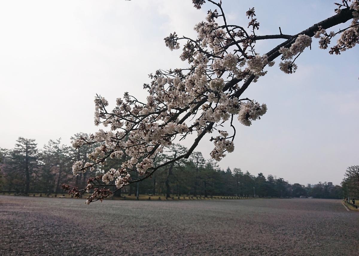f:id:Kaimotu_Hatuji:20210327144555j:plain