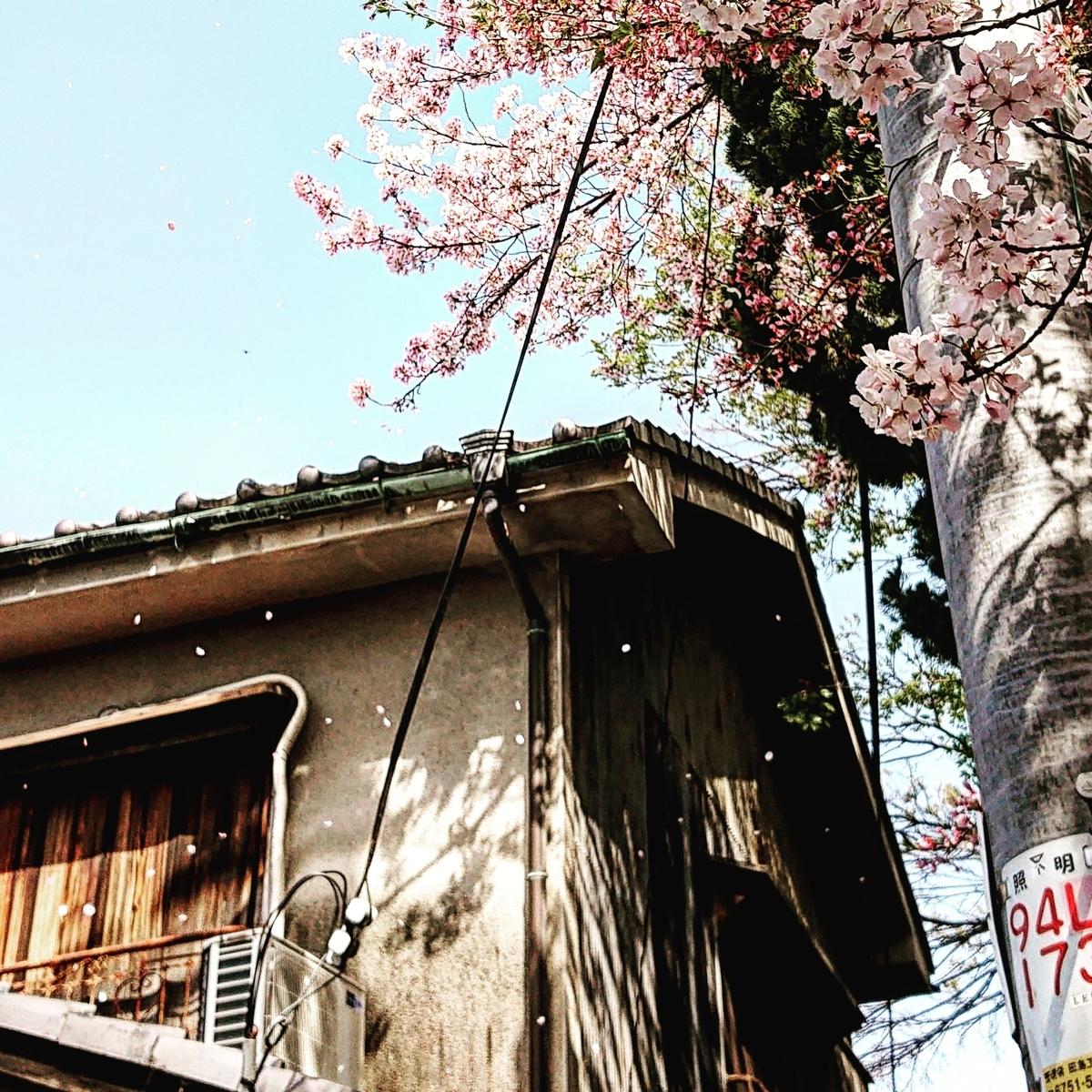 f:id:Kaimotu_Hatuji:20210402160551j:plain