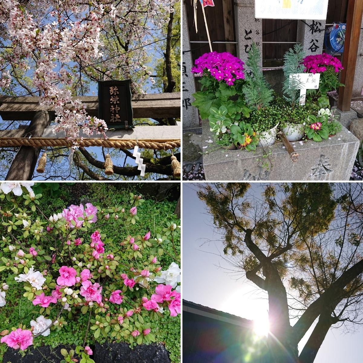 f:id:Kaimotu_Hatuji:20210402173452j:plain