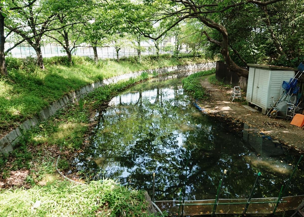 f:id:Kaimotu_Hatuji:20210425130728j:plain