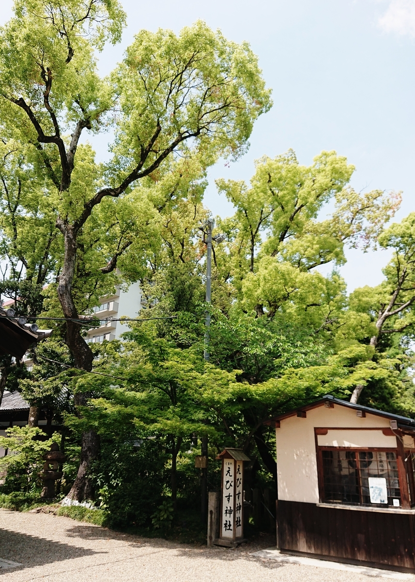f:id:Kaimotu_Hatuji:20210430090433j:plain