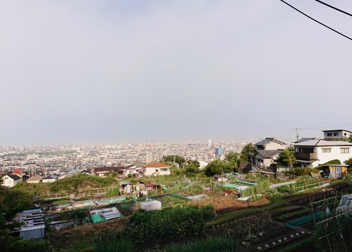f:id:Kaimotu_Hatuji:20210503142931j:plain