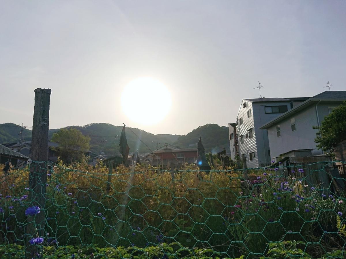 f:id:Kaimotu_Hatuji:20210505122808j:plain