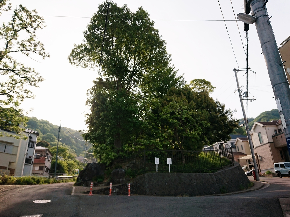 f:id:Kaimotu_Hatuji:20210505180717j:plain