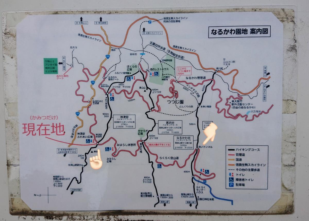 f:id:Kaimotu_Hatuji:20210516063938p:plain