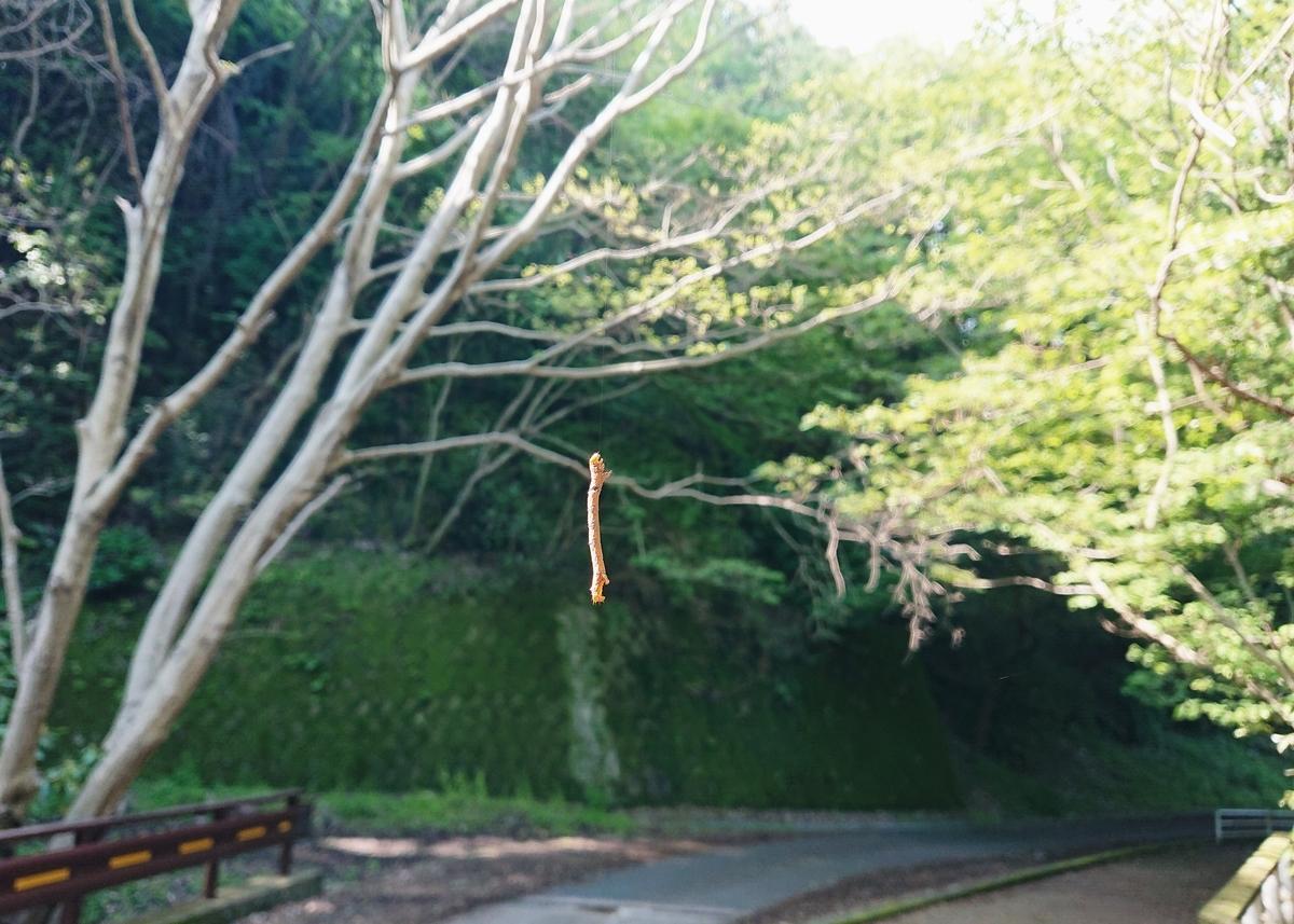 f:id:Kaimotu_Hatuji:20210516064727j:plain