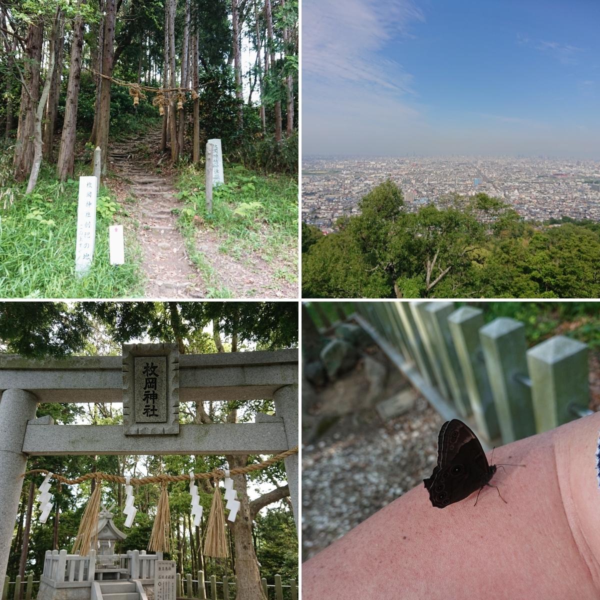 f:id:Kaimotu_Hatuji:20210519143811j:plain