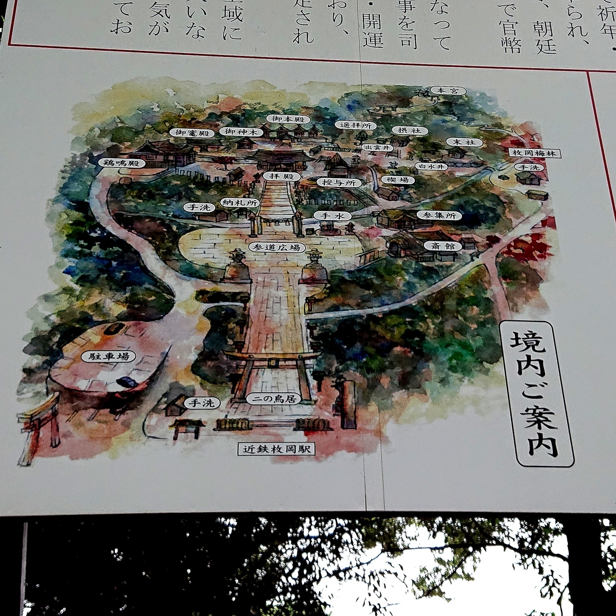f:id:Kaimotu_Hatuji:20210601114549j:plain