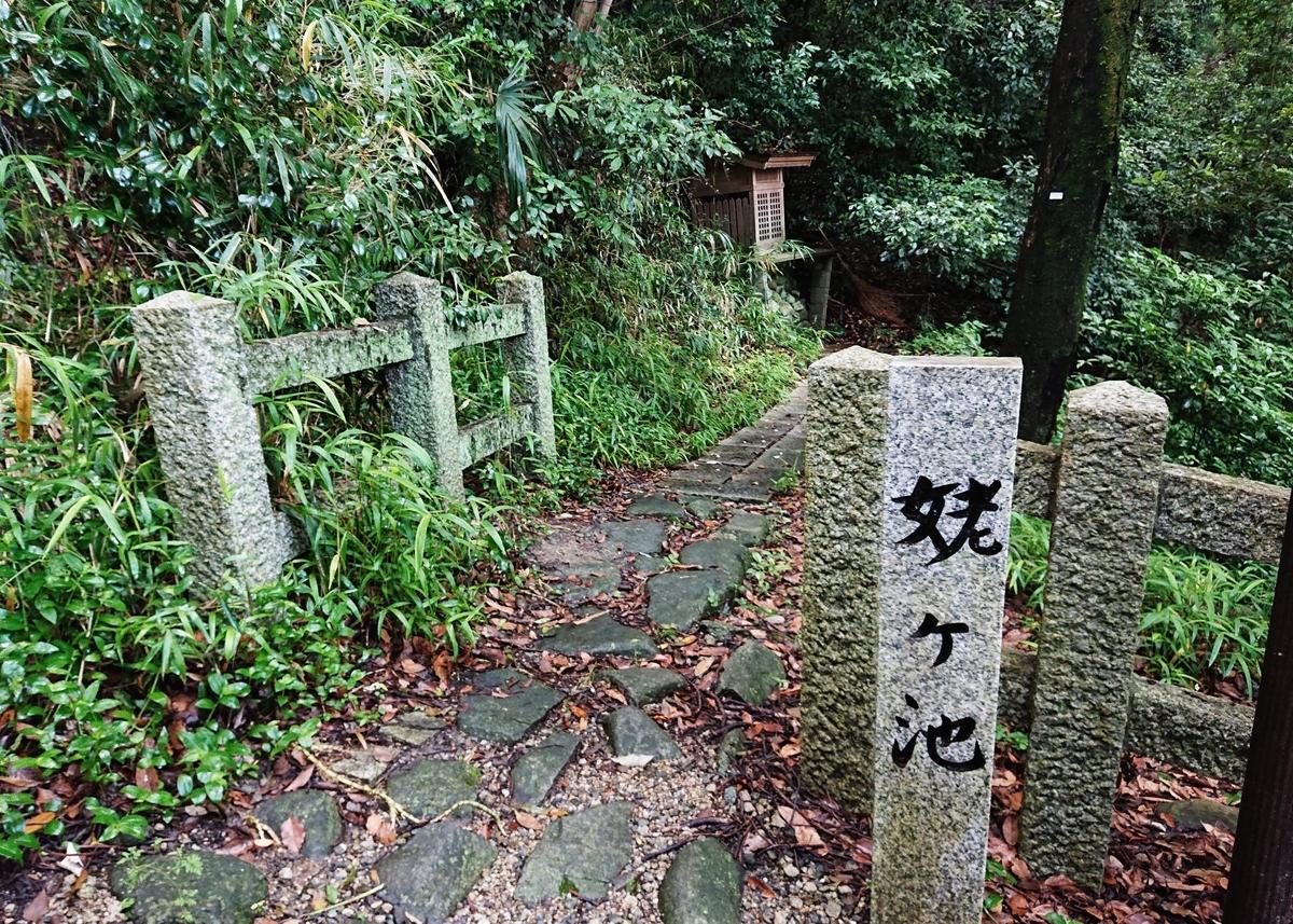 f:id:Kaimotu_Hatuji:20210603103214j:plain