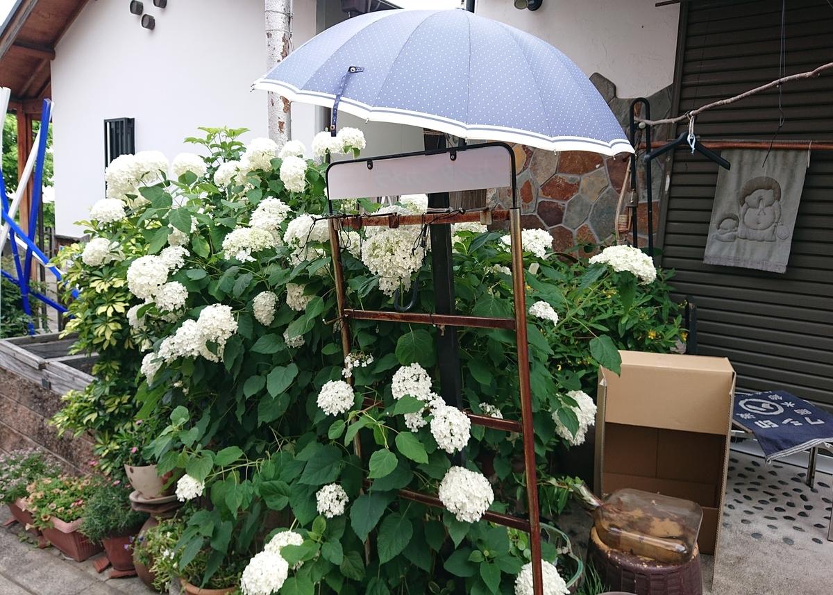 f:id:Kaimotu_Hatuji:20210611114934j:plain