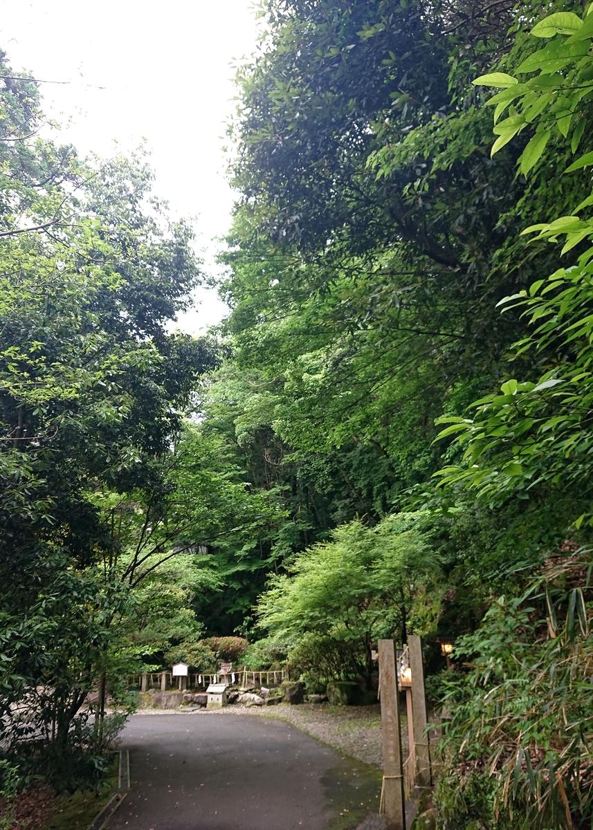 f:id:Kaimotu_Hatuji:20210615103315j:plain