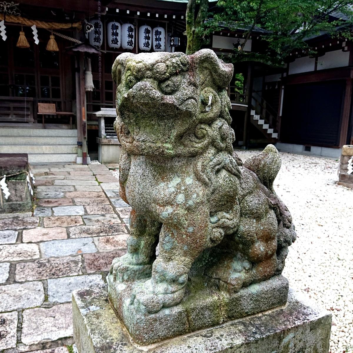 f:id:Kaimotu_Hatuji:20210615103457j:plain