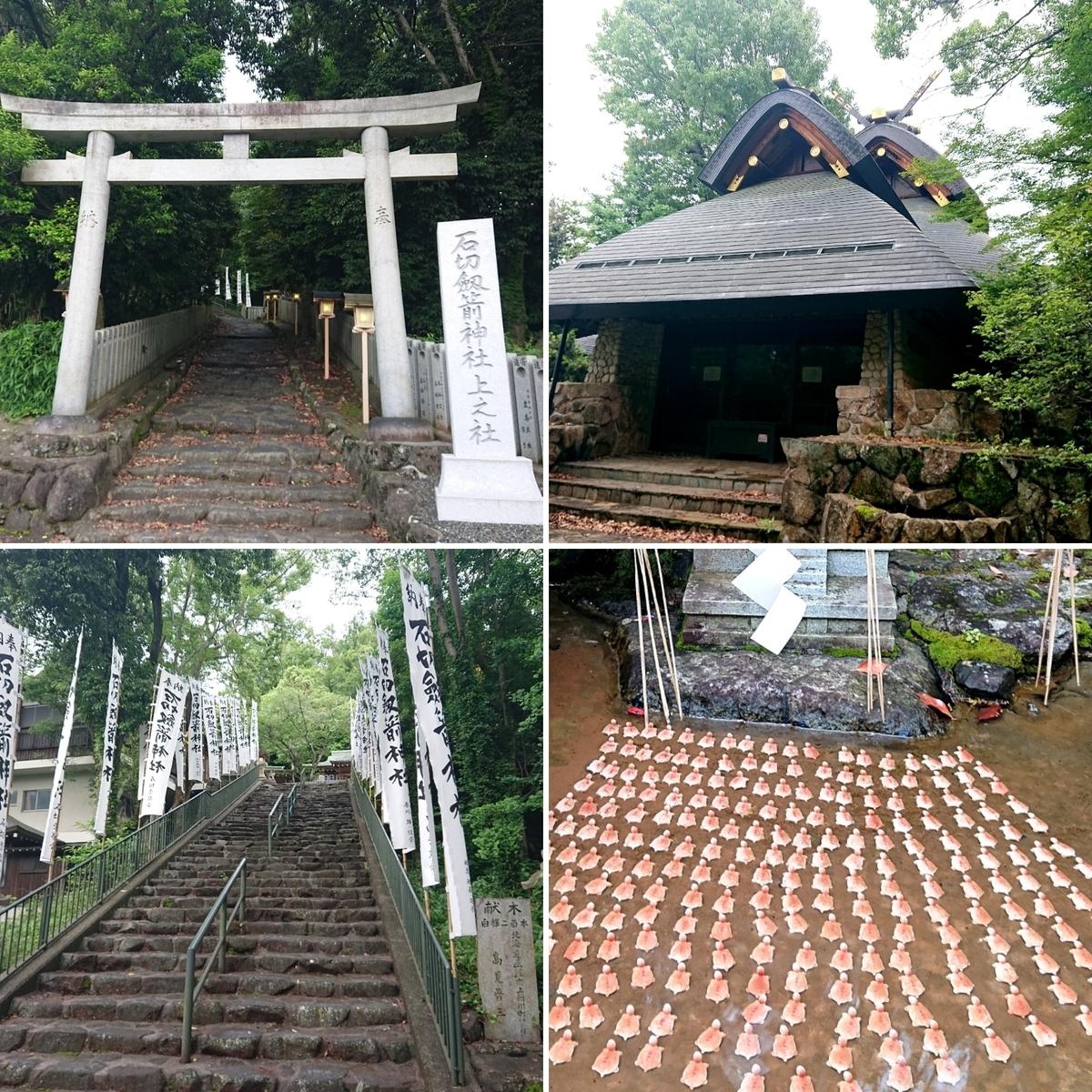 f:id:Kaimotu_Hatuji:20210615131827j:plain