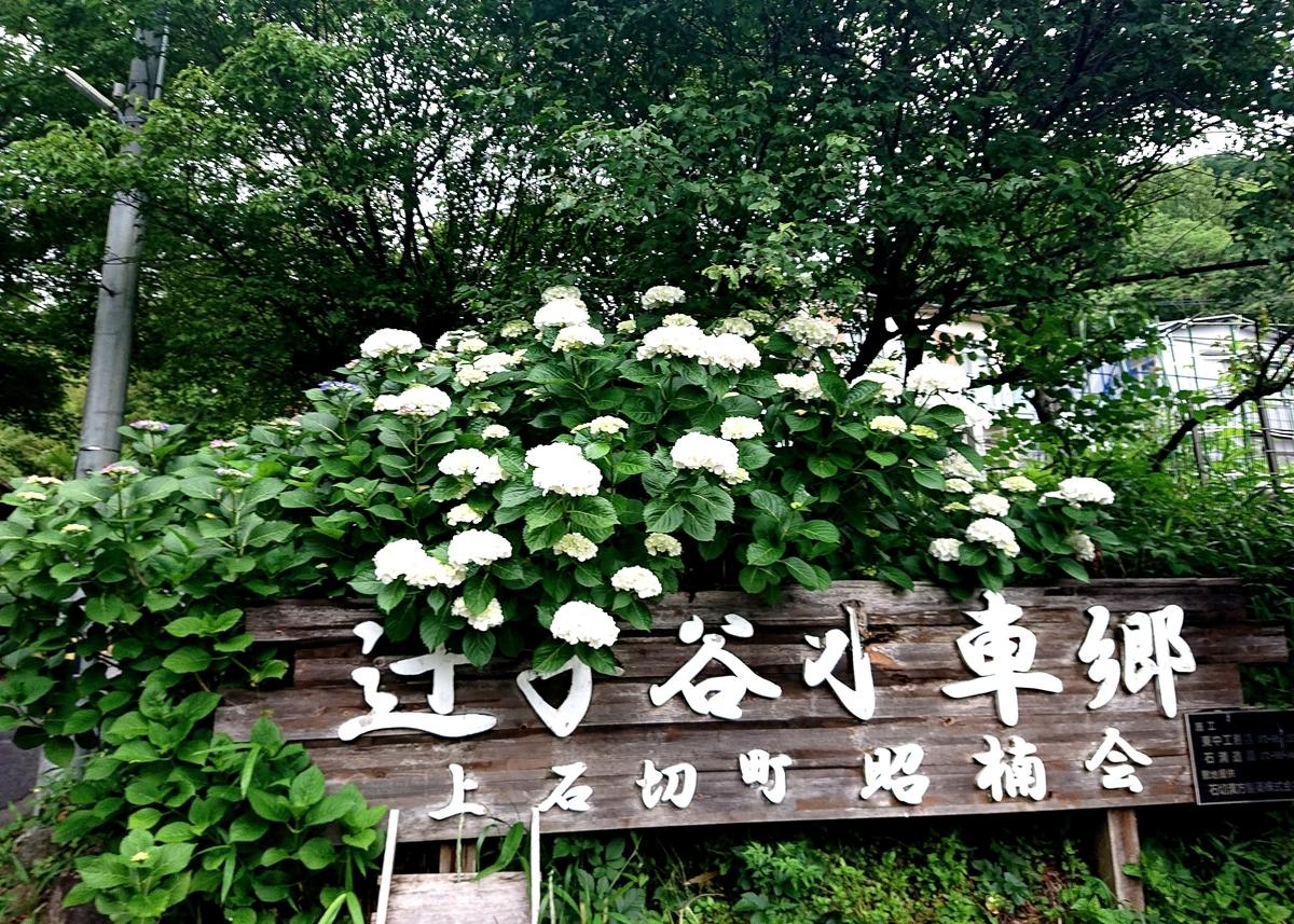 f:id:Kaimotu_Hatuji:20210617110752j:plain