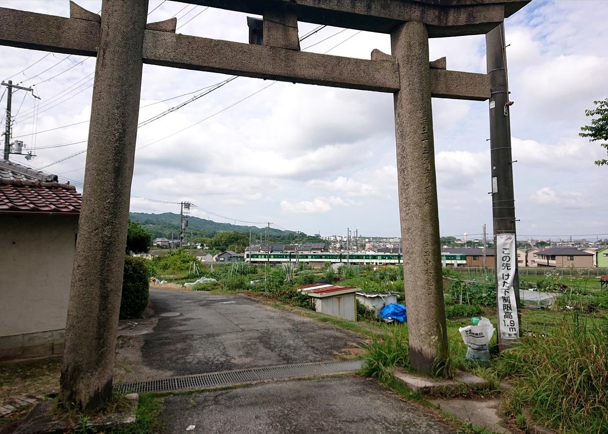 f:id:Kaimotu_Hatuji:20210621130600j:plain