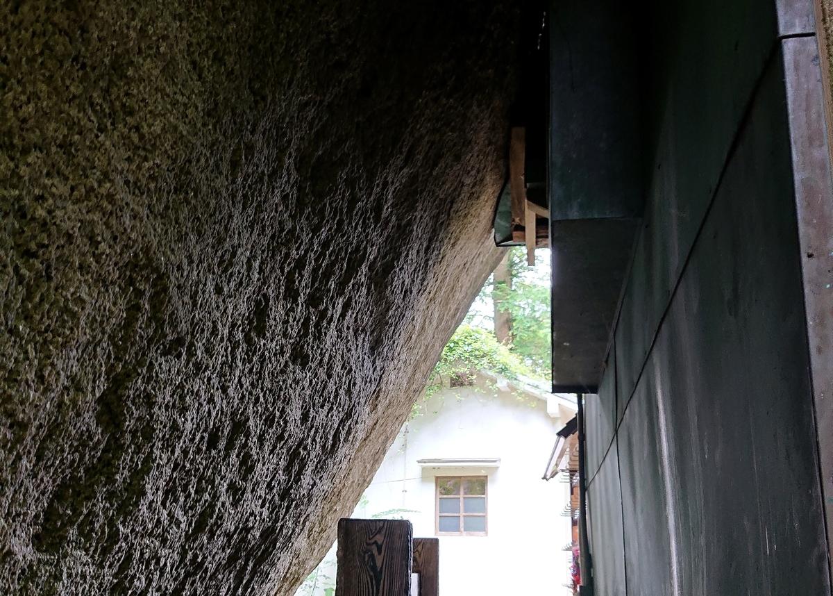 f:id:Kaimotu_Hatuji:20210624125909j:plain