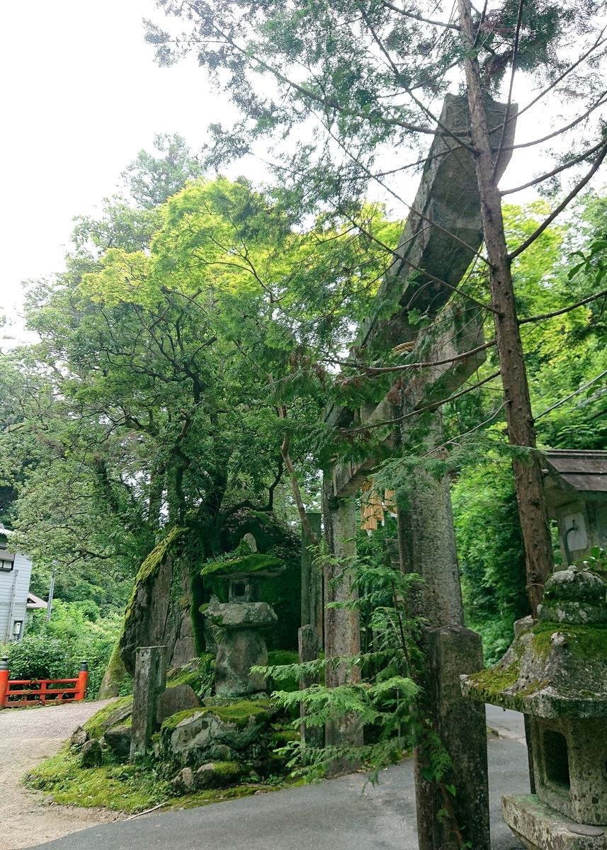 f:id:Kaimotu_Hatuji:20210624130422j:plain