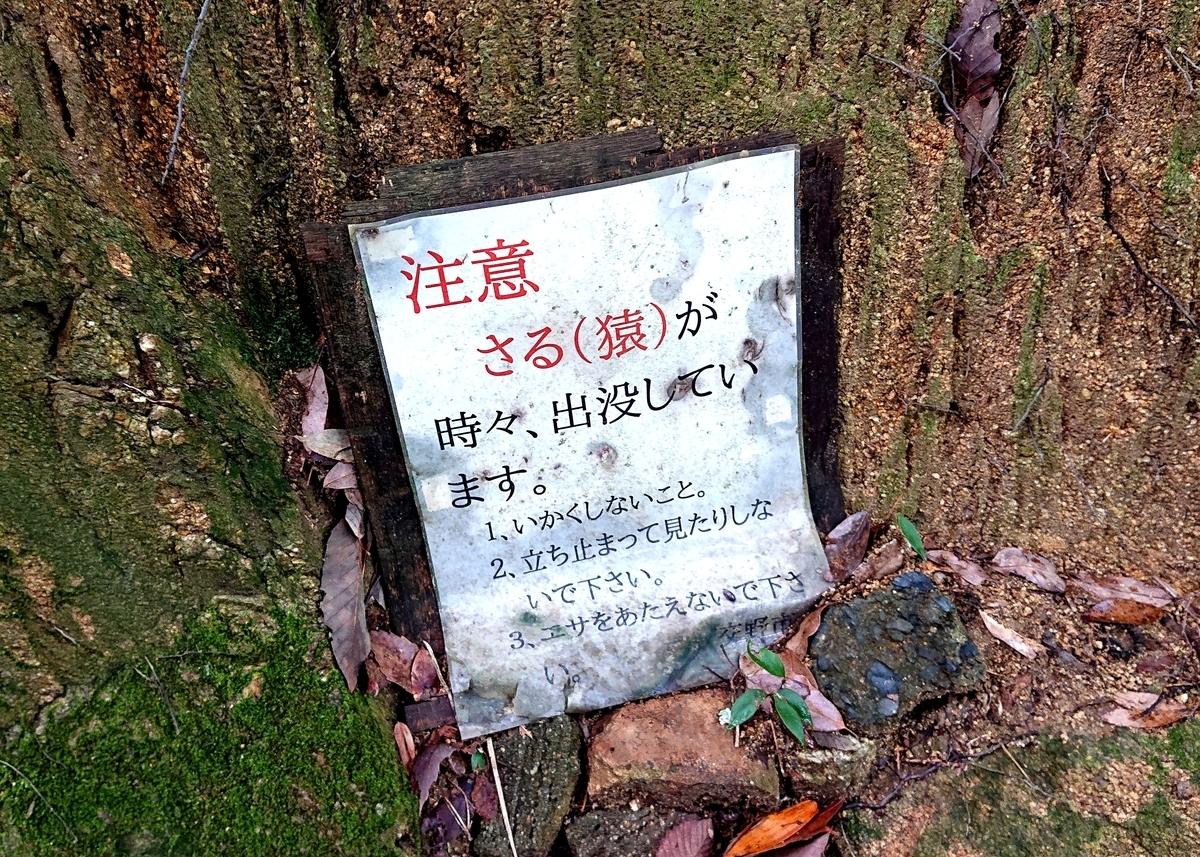 f:id:Kaimotu_Hatuji:20210625142522j:plain