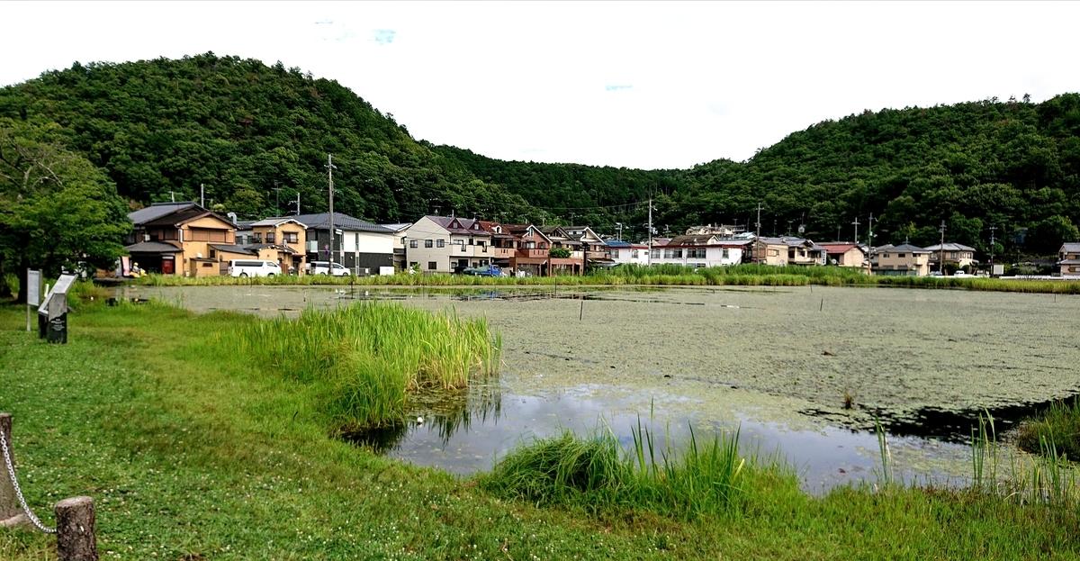 f:id:Kaimotu_Hatuji:20210702151125j:plain