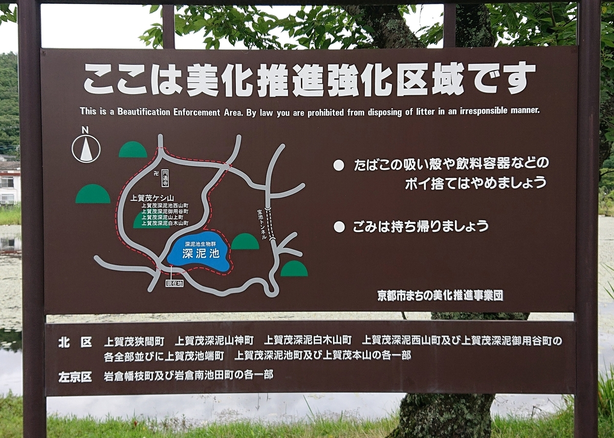 f:id:Kaimotu_Hatuji:20210702153419j:plain