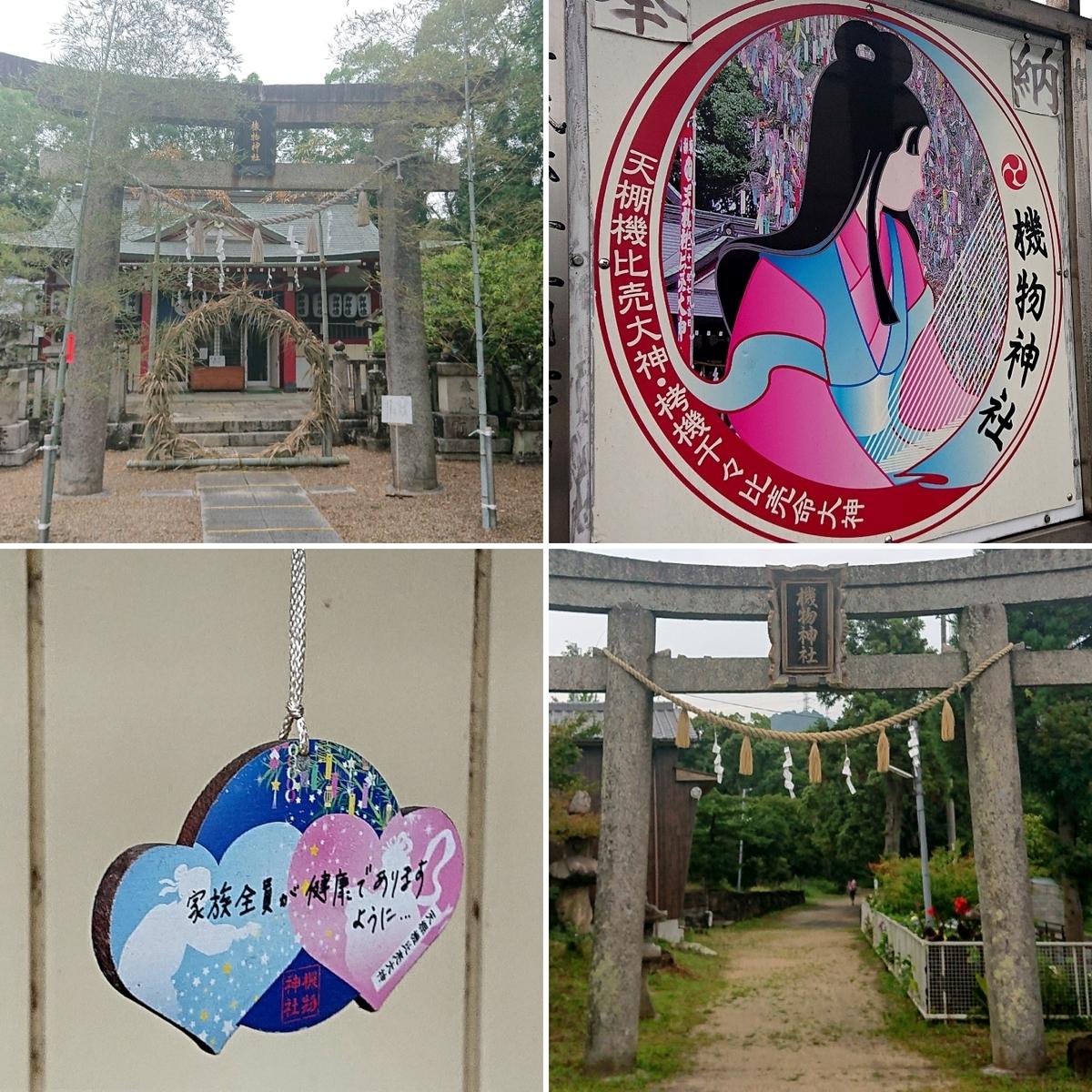 f:id:Kaimotu_Hatuji:20210706150856j:plain