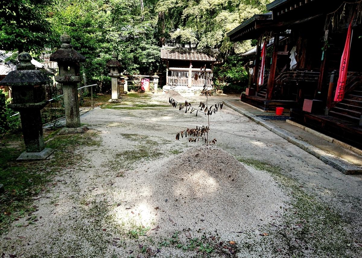f:id:Kaimotu_Hatuji:20210709171744j:plain