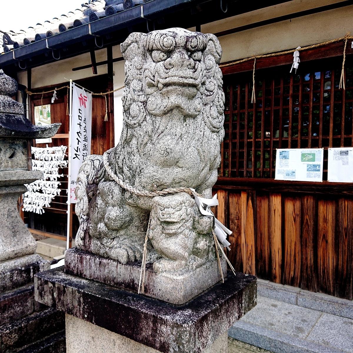 f:id:Kaimotu_Hatuji:20210717153427j:plain