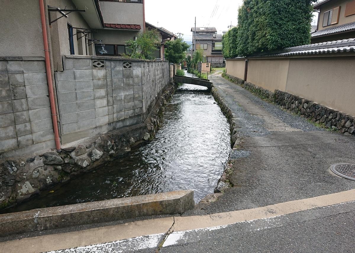 f:id:Kaimotu_Hatuji:20210719063619j:plain