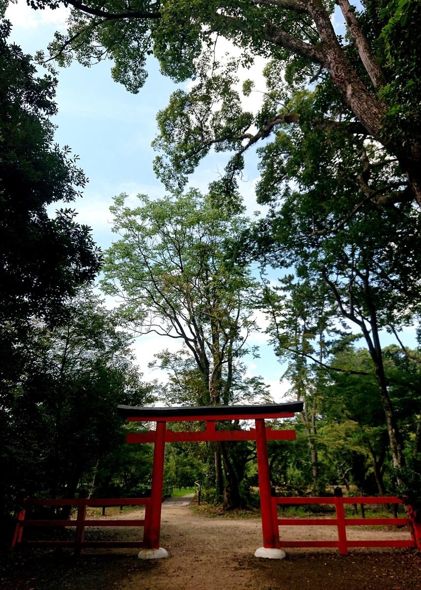 f:id:Kaimotu_Hatuji:20210722182020j:plain