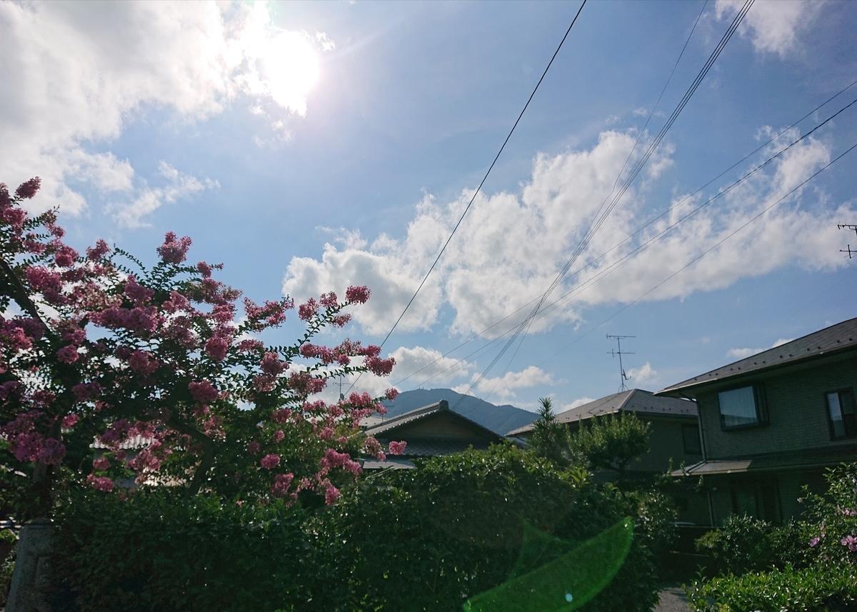 f:id:Kaimotu_Hatuji:20210723134442j:plain