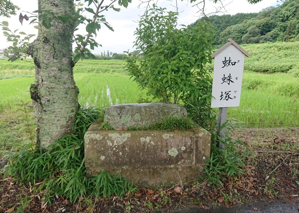 f:id:Kaimotu_Hatuji:20210724125020j:plain