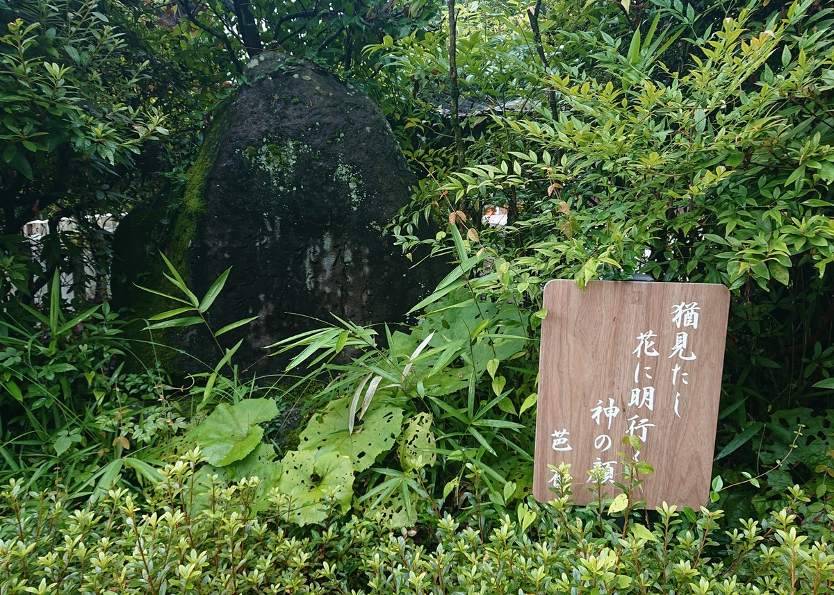 f:id:Kaimotu_Hatuji:20210725124833j:plain