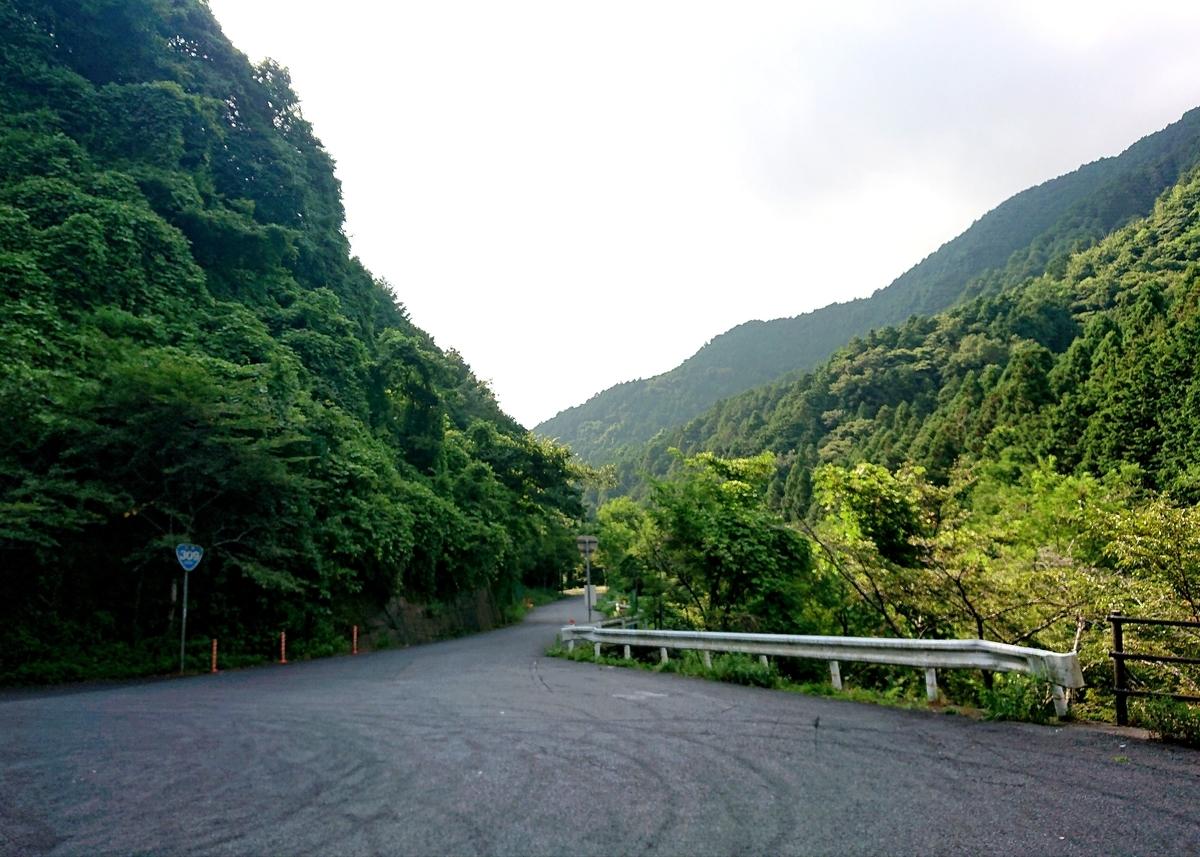 f:id:Kaimotu_Hatuji:20210731101352j:plain
