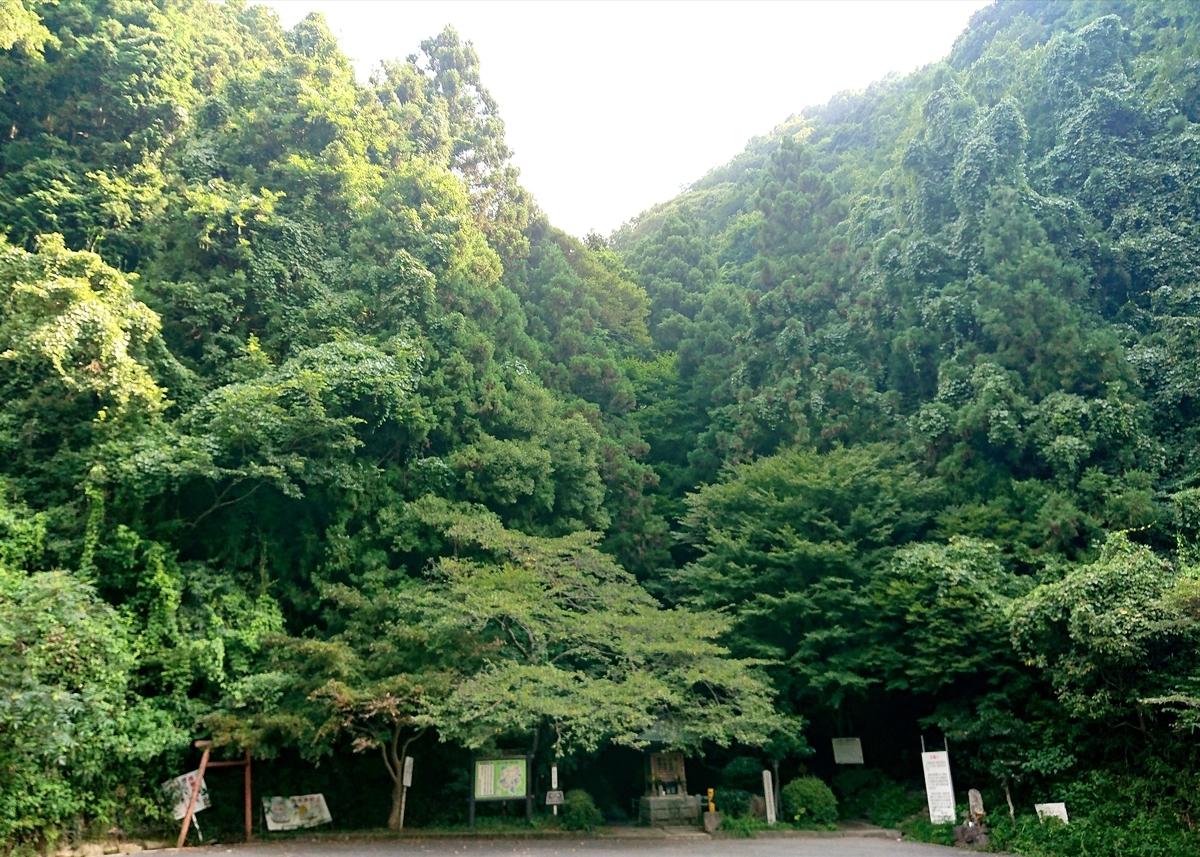 f:id:Kaimotu_Hatuji:20210731101418j:plain