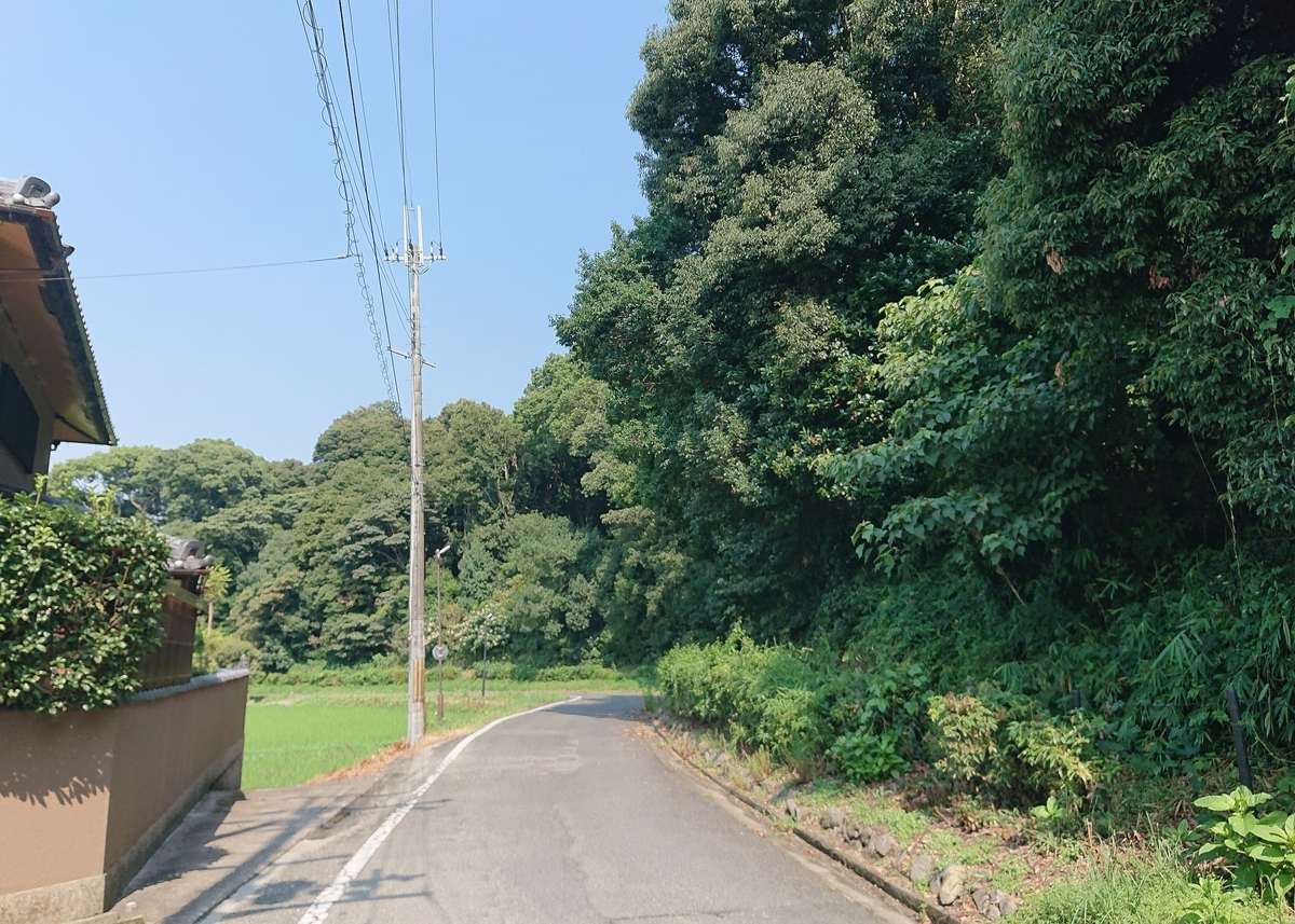 f:id:Kaimotu_Hatuji:20210806135933j:plain