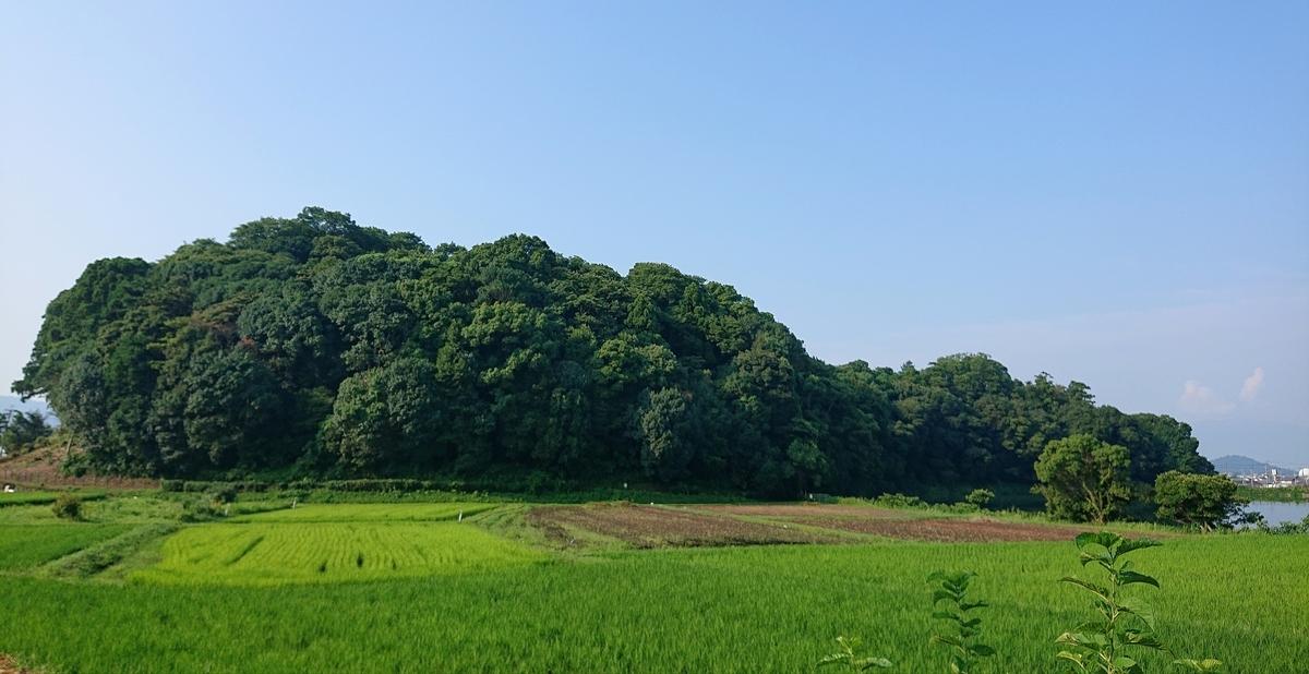 f:id:Kaimotu_Hatuji:20210806140049j:plain