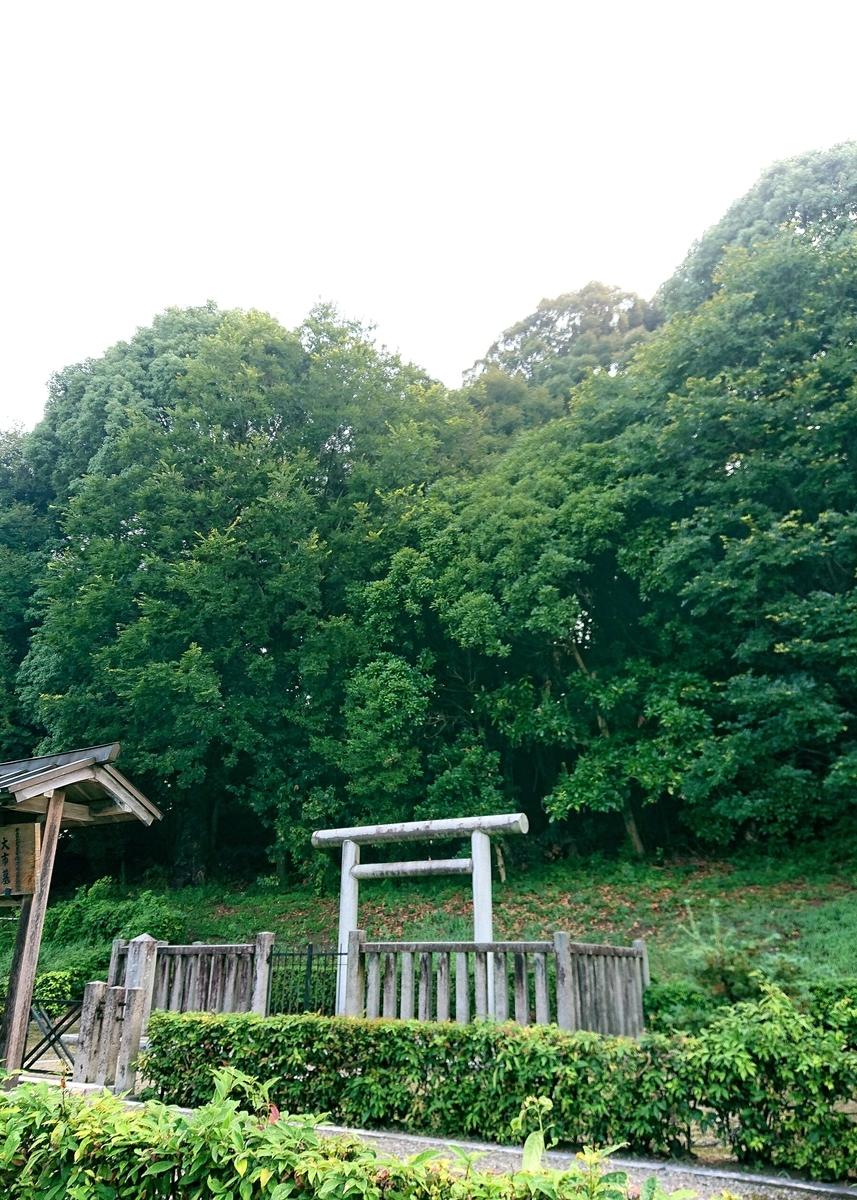 f:id:Kaimotu_Hatuji:20210806140227j:plain