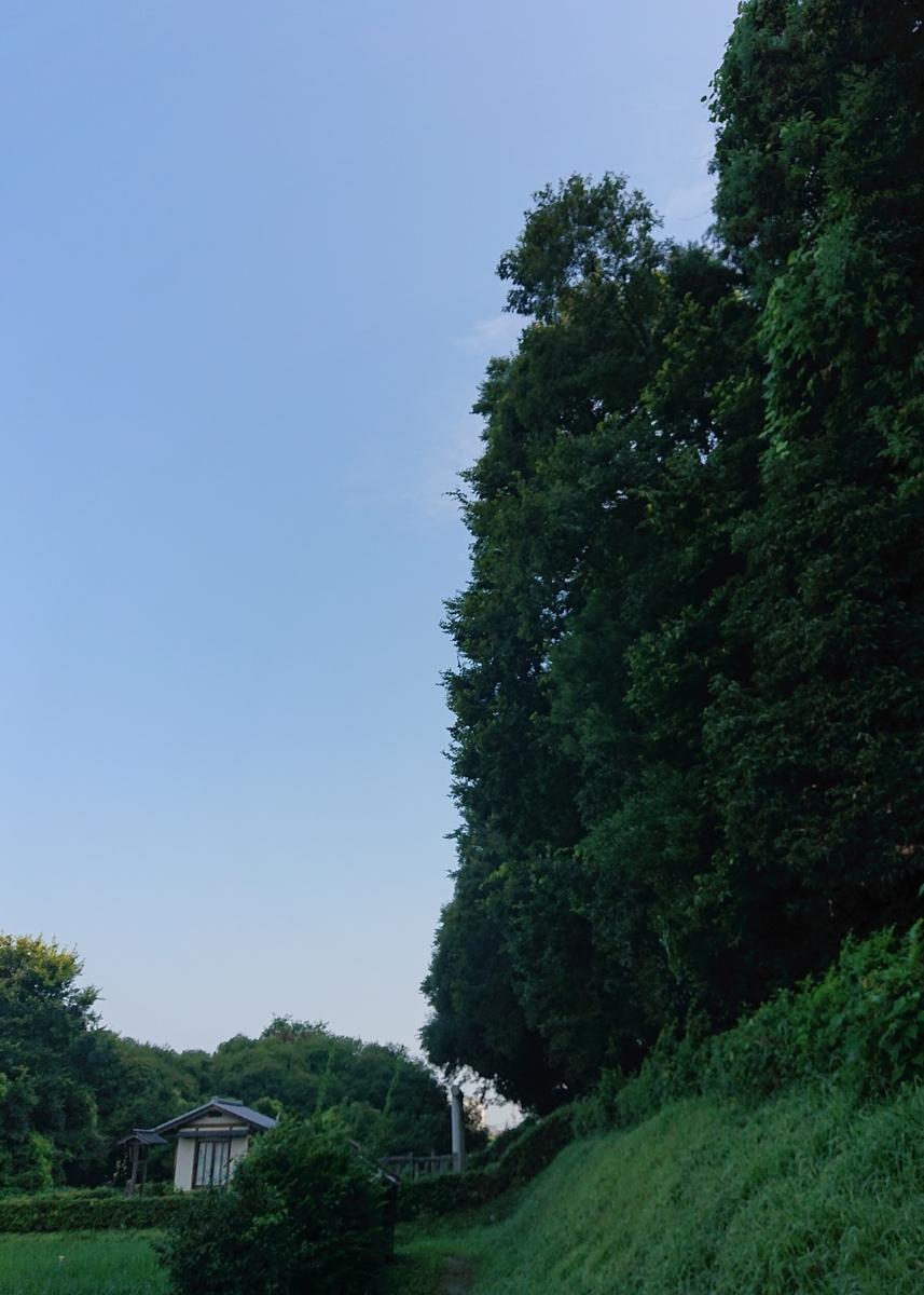 f:id:Kaimotu_Hatuji:20210806140246j:plain