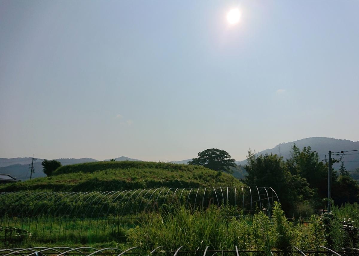 f:id:Kaimotu_Hatuji:20210807112045j:plain