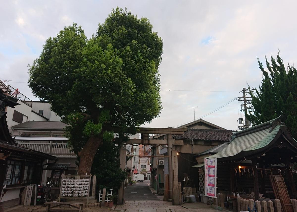 f:id:Kaimotu_Hatuji:20210810114317j:plain