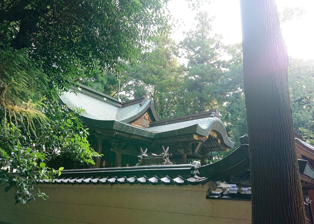 f:id:Kaimotu_Hatuji:20210817090517j:plain