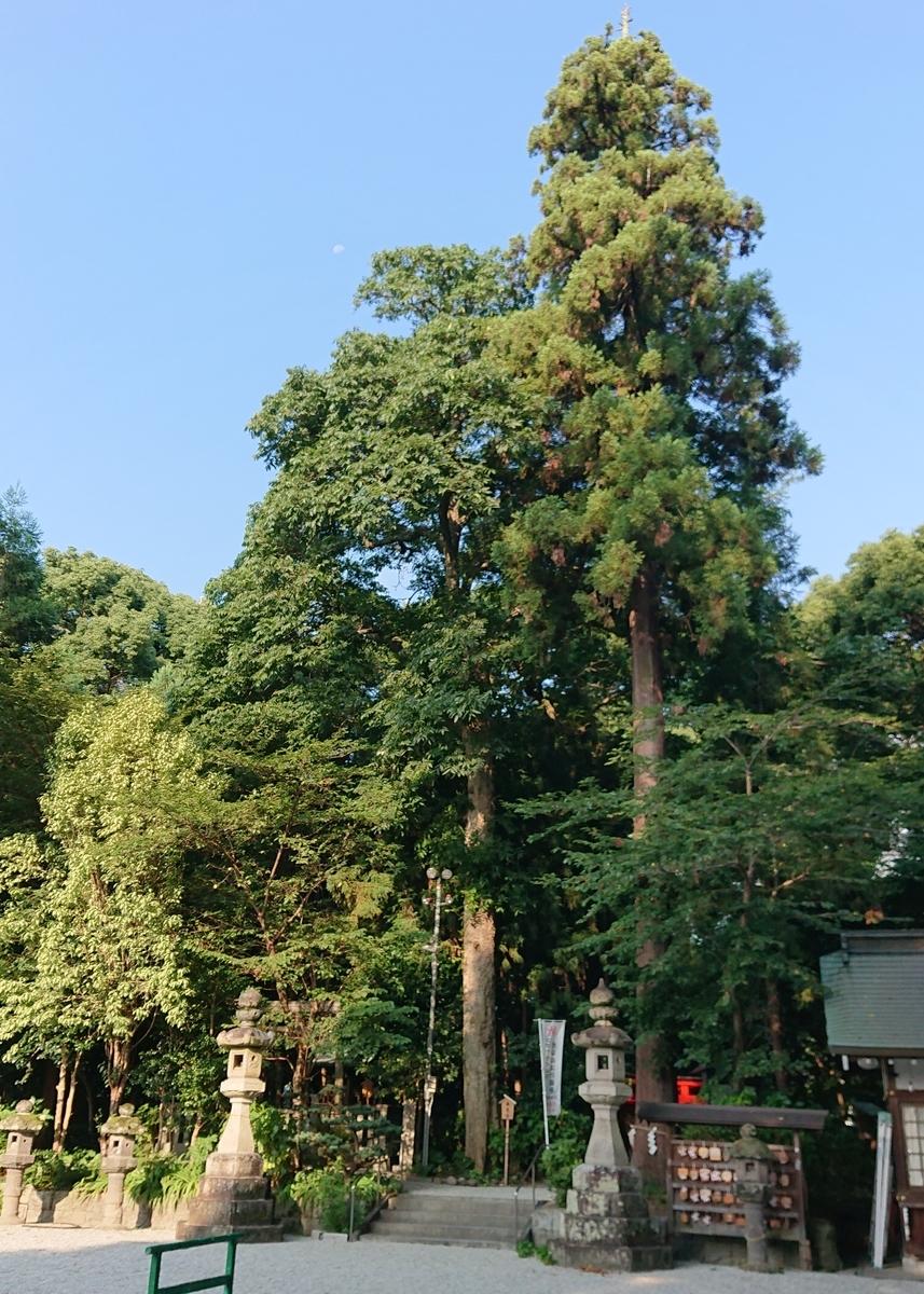 f:id:Kaimotu_Hatuji:20210817090823j:plain