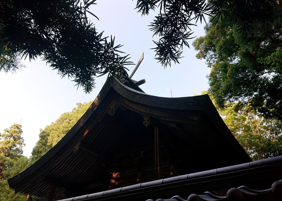 f:id:Kaimotu_Hatuji:20210817090843j:plain