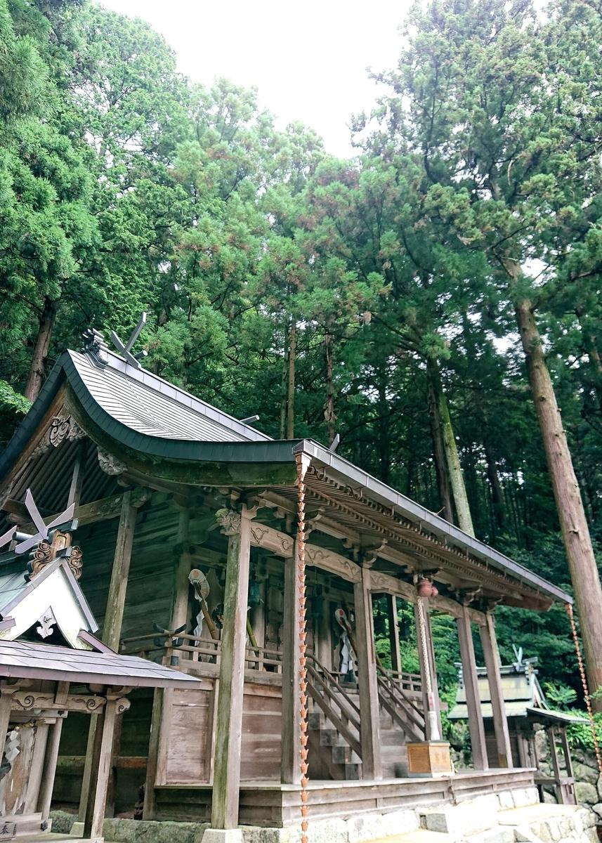 f:id:Kaimotu_Hatuji:20210819135017j:plain