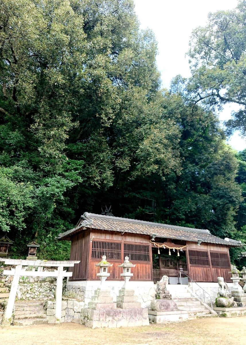 f:id:Kaimotu_Hatuji:20210823123225j:plain