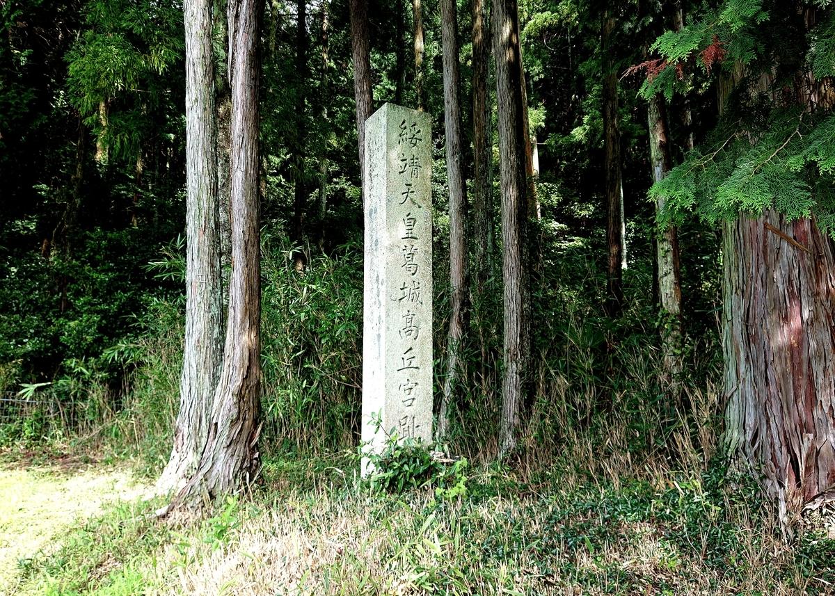 f:id:Kaimotu_Hatuji:20210825061435j:plain
