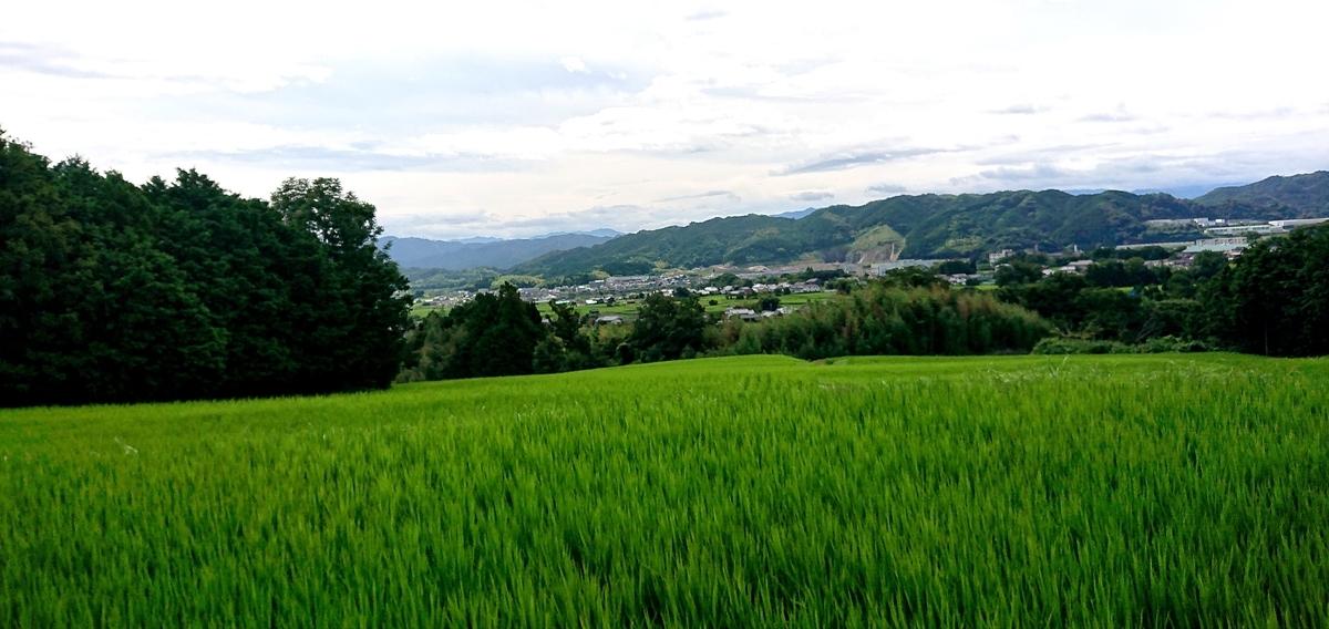 f:id:Kaimotu_Hatuji:20210825061656j:plain