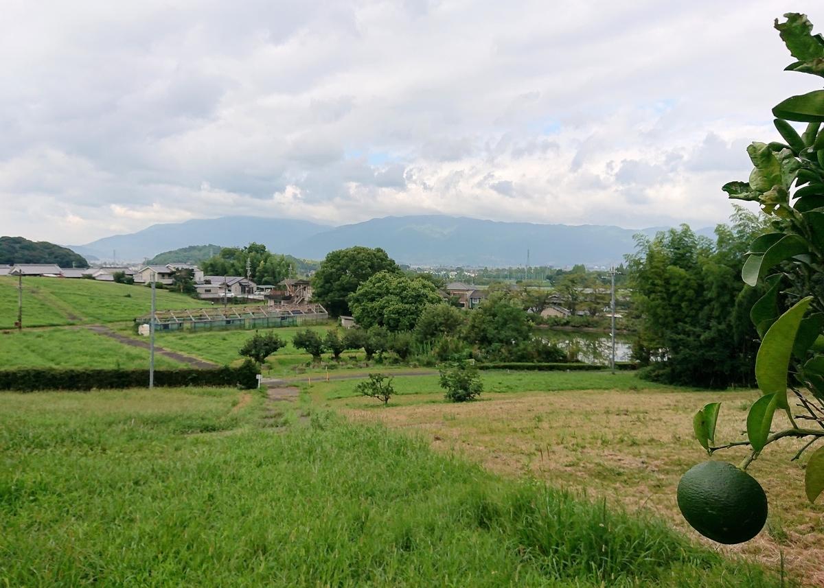 f:id:Kaimotu_Hatuji:20210901150638j:plain