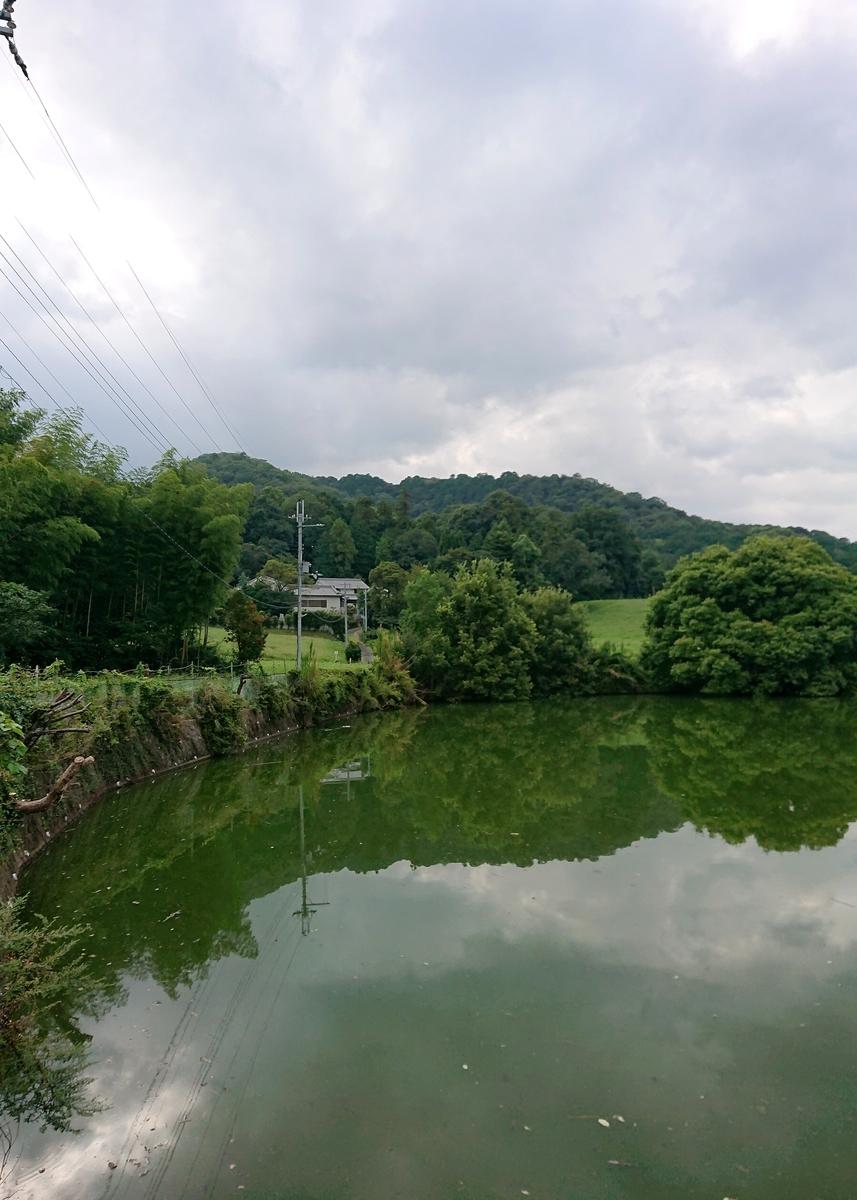 f:id:Kaimotu_Hatuji:20210901150724j:plain