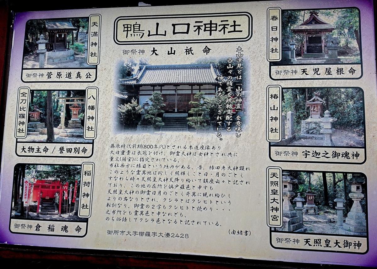 f:id:Kaimotu_Hatuji:20210903103210j:plain